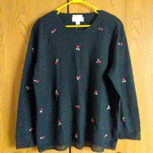CJ. Banks Women's Hand Emboidered Pullover Sweater